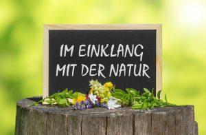 Naturheilkunde: Im Einklang mit der Natur
