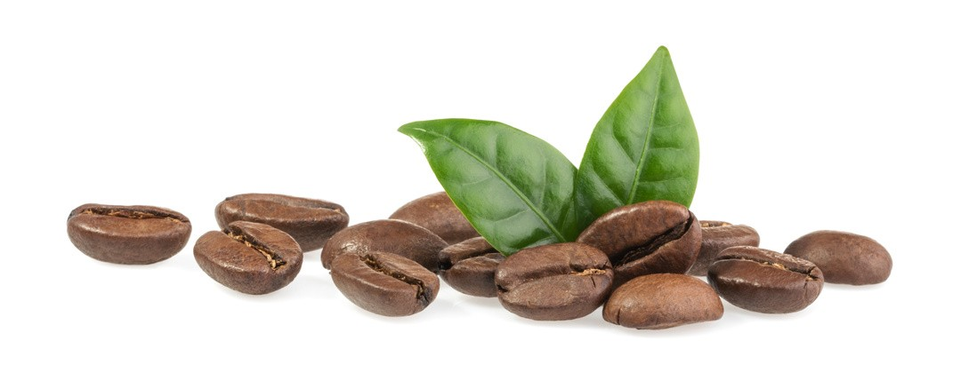 Coffein und seine munter machende Wirkung