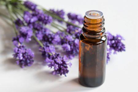 Lavendel fein - das ätherische Öl des Echten Lavendels