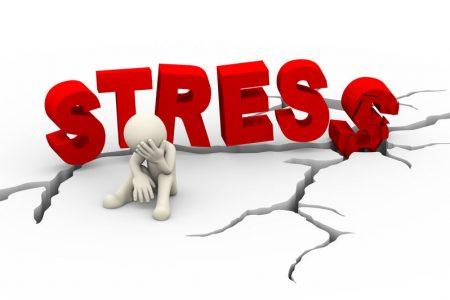 Stressbewältigung mit Heilpflanzen